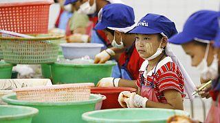 Thailandia, 8.000 migranti bambini sfruttati nella filiera del gamberetto