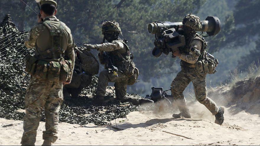La Lituanie espère des forces américaines sur son sol