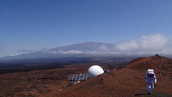 Marsi valóságshow