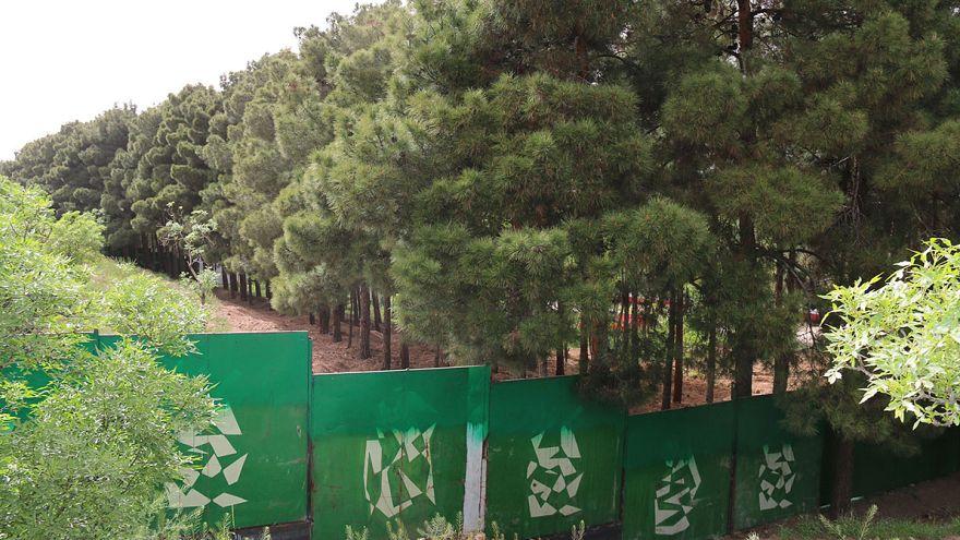 درختان پارک ملی سُرخه حصار در خطر نابودی