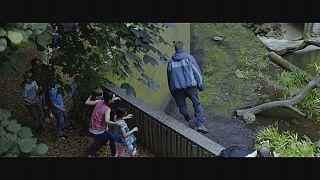 """Les amitiés invisibles"", un thriller haletant sur la manipulation"
