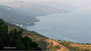 Путин: памятка туристам в Крыму - обслуживание иностранных интересов