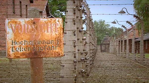British teenage boys accused of Auschwitz theft