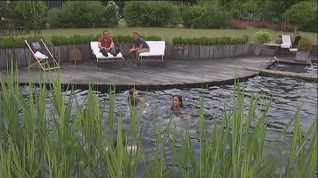 Эко-бассейн: рукотворный пруд у себя на участке