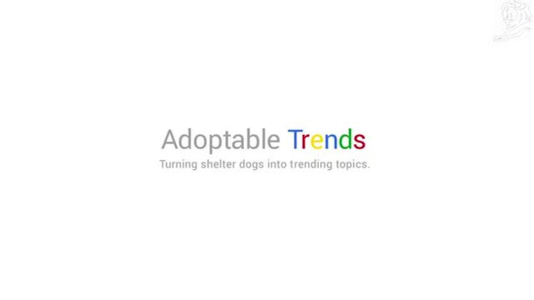 Adoptable trends (Dallas Pets Alive!)
