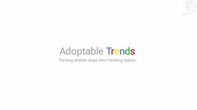 Adoptable trends (Dallas Pets Alive!)