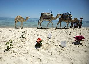 Tunisia tragedy: a tribute to the victims