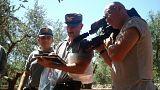 Puglia: una lotta estenuante contro il killer degli ulivi
