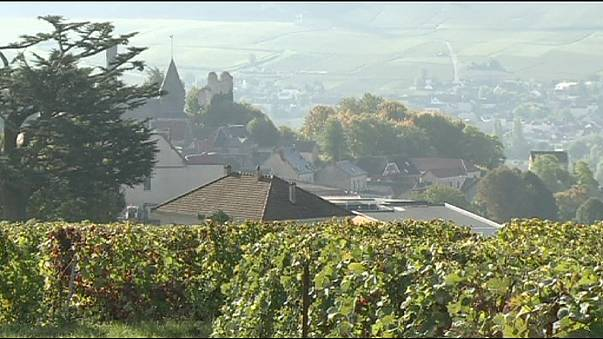 El paisaje vinícola de Bourgnogne, patrimonio de la Unesco