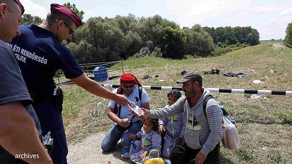Венгрия решила отгородиться от Сербии стеной