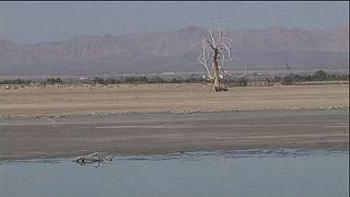 """بحيرة """"سالتون سي""""،كارثة بيئية في كاليفورنيا"""