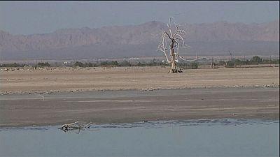 La agonía del lago Saltón