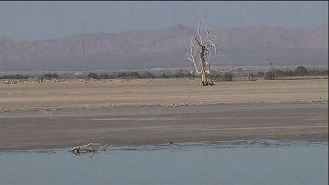 La Salton Sea, menace écologique pour la Californie