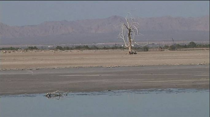 Moribund Salton Sea fast becoming a Californian health hazard