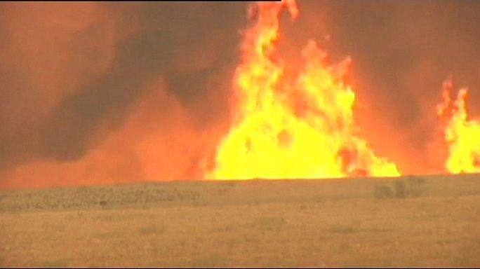 İspanya'da yaz sıcakları orman yangınlarını artırdı