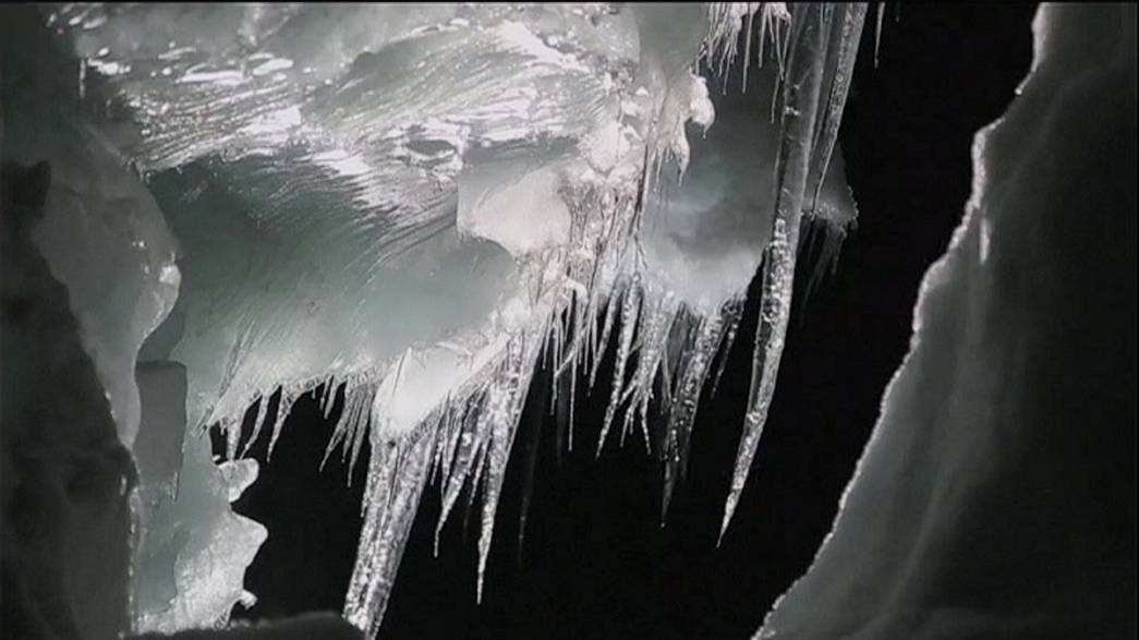 Gletscher Langjökull, die bedrohte Art