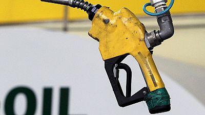 OPEC ups global oil demand forecast, Saudi Arab
