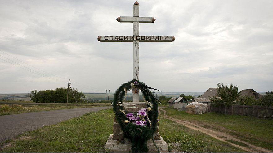Катастрофа MH17: год спустя