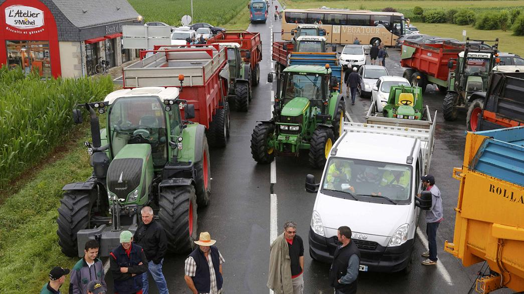 France announces emergency measures for cash-strapped farmers