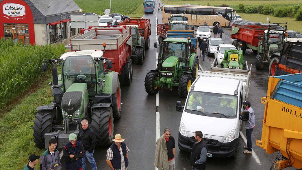 Landesweite Proteste französischer Bauern: Hollande verspricht Notfallplan