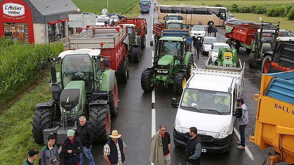 Фермеры Франции, протестуя, мешают туристам