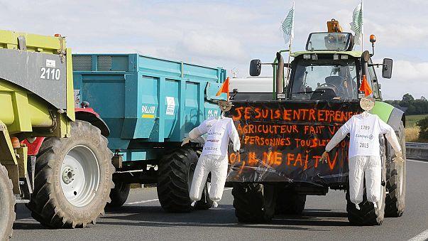 Düşük fiyatlara tepki gösteren Fransız çiftçilerin protestoları devam ediyor