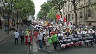 Francia, tabaccai e carote davanti al Senato