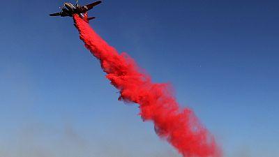 California: gravissimo incendio nella contea di Napa. Centinaia di ettari distrutti