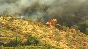 Forest fires hit Albania