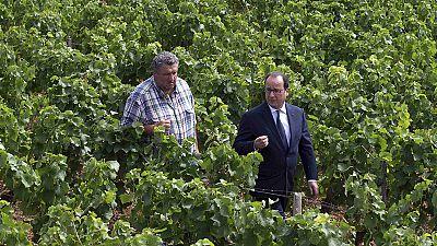 """François Hollande: """"Esst französisches Fleisch!"""""""