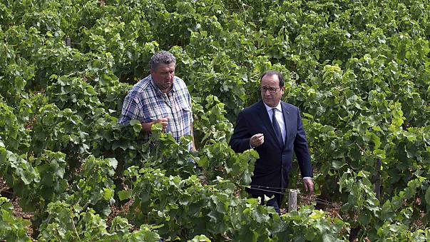 A mentőcsomag után is nyomás alatt tartják a gazdák a francia kormányt