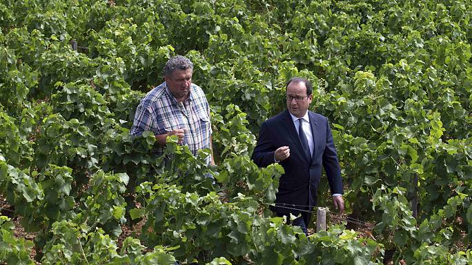Farmers: President calls for profits to be passed back down the value chain