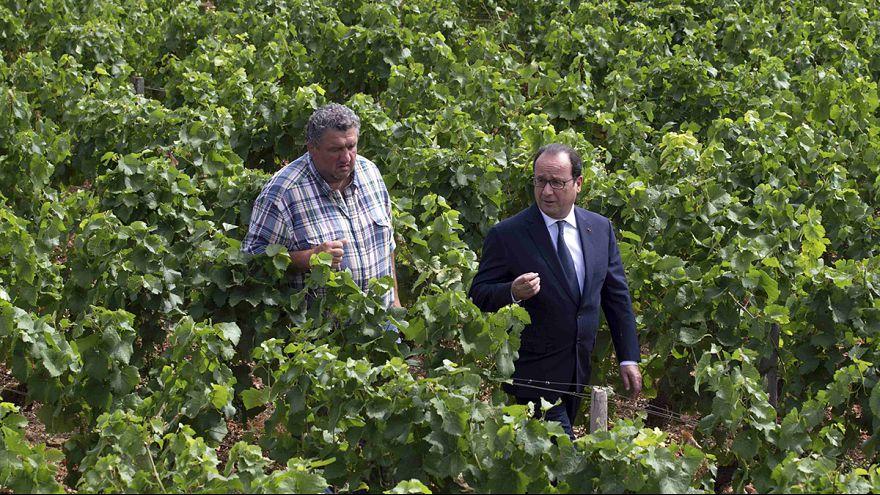 Hollande defiende el plan de su Gobierno ante los ganaderos de Dijon