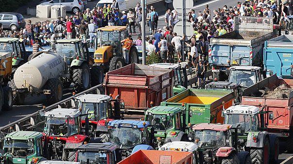 Fransız çiftçilere göre mevcut yönetmelikler değişmeden sorunun çözümü zor
