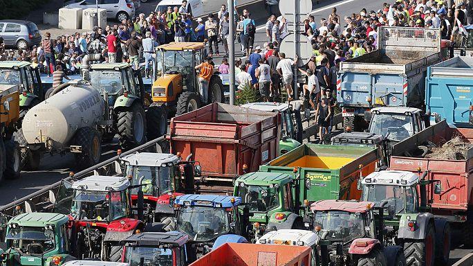 Lyonban tüntettek a francia gazdák