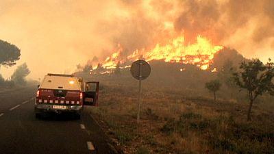 Rekordhitze: Anhaltende Waldbrände vor Barcelona und Bordeaux