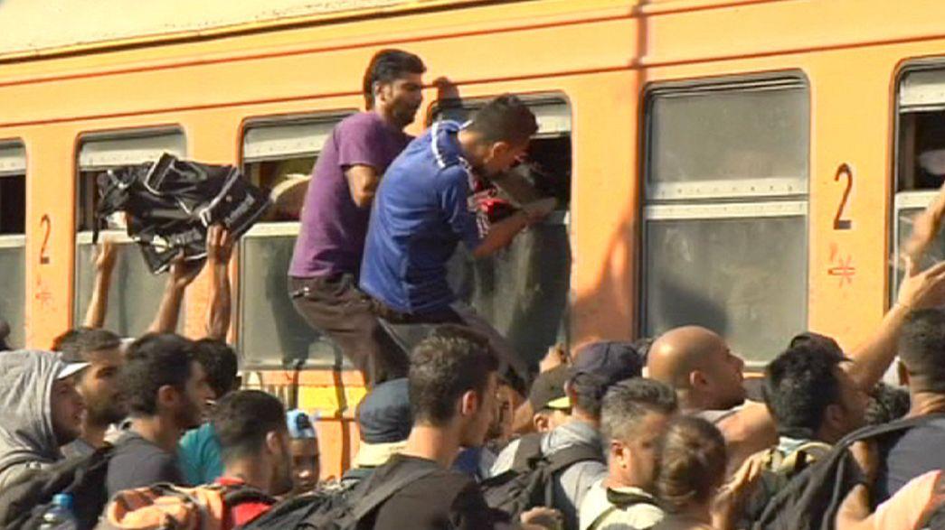 Clandestinos furam fronteiras da Macedónia