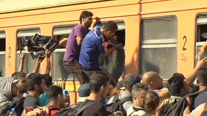 Поток мигрантов захлестнул Македонию