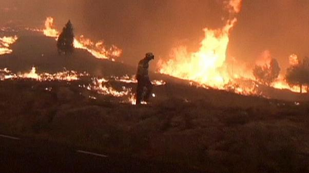 Waldbrände in Katalonien