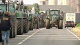 Франция: фермеры снова протестуют