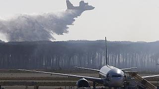 Italy: Rome's Fuimicino airport recovers after another forest fire