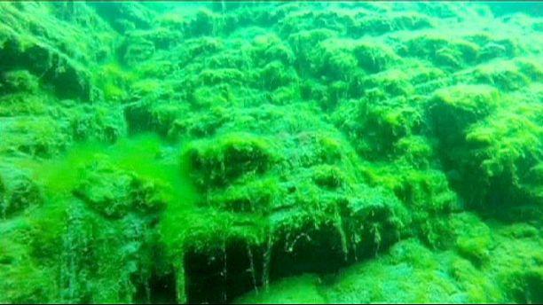 """Rússia: Lago Baikal está muito """"doente"""" devido a uma invasora alga verde"""