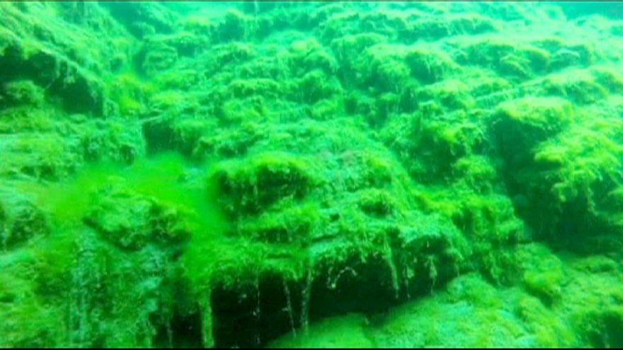 Baykal Gölü'nde yosun tehlikesi