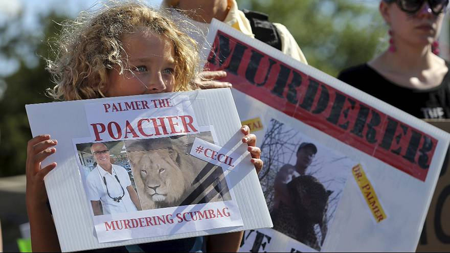 Leone Cecil: incriminati accompagnatori di Walter James Palmer