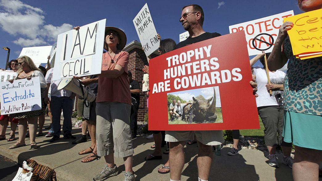 EUA: Protestos contra o dentista que matou o leão Cecil