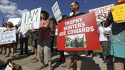 Cecil the lion: angry protesters gather outside Walter Palmer's office