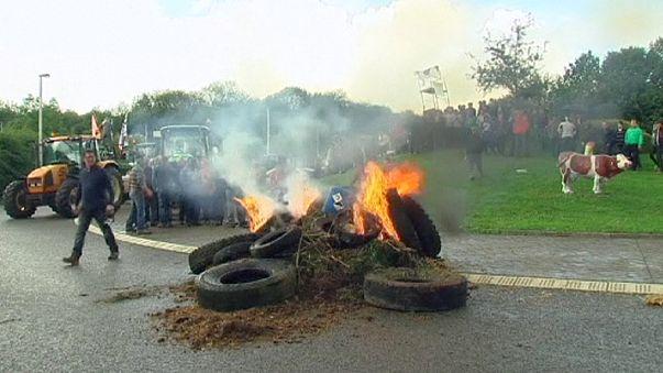 Belgian dairy farmers block roads in more price protests