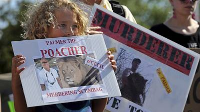 Zimbabwe minister calls for extradition of US dentist who killed Cecil the Lion