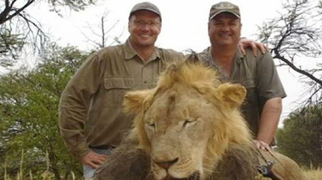 O homicida do leão Cecil poderá ser extraditado