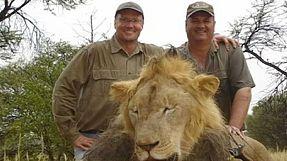 Erlegter Löwe Cecil: Simbabwe will Auslieferung des US-Jägers beantragen